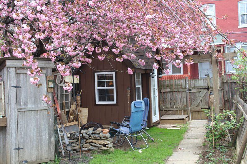 custom-sheds-marketing-studio