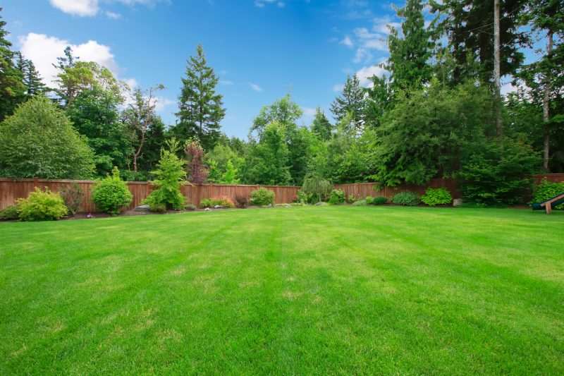 size-of-your-backyard.jpg